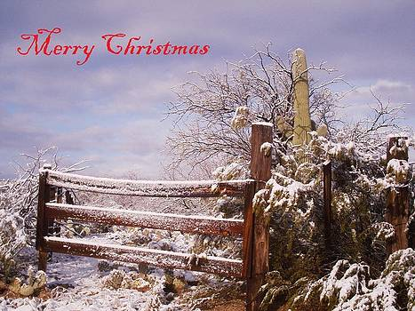 Western Christmas by David S Reynolds
