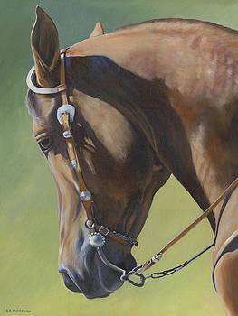 Western Elegance by Alecia Underhill