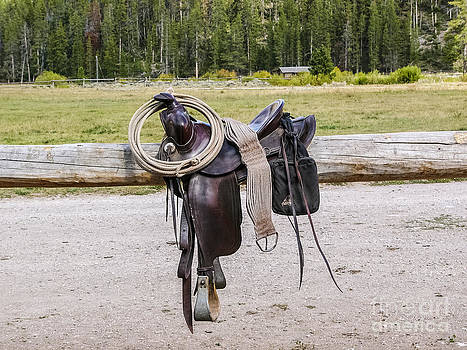 Western Saddle and Gear by Sue Smith