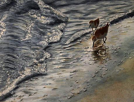 Western Sandpiper by Carol Oberg Riley