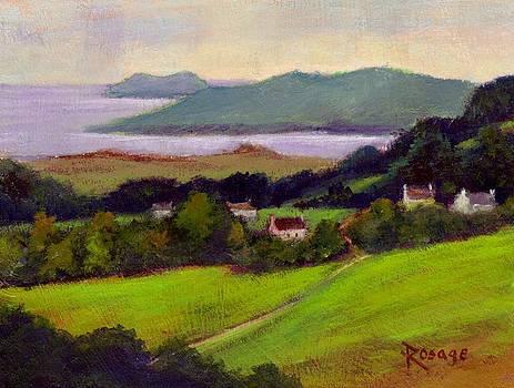 Western Shore Ireland by Bernie Rosage Jr