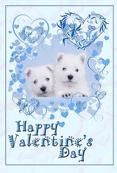 Waldek Dabrowski - Westie blue Valentine