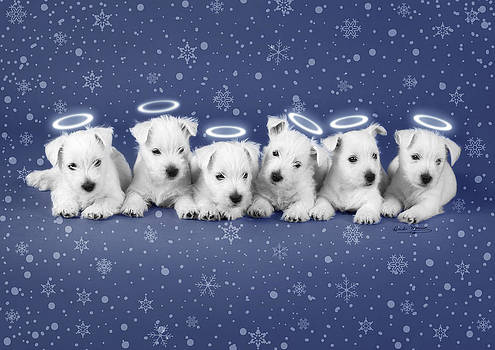 Westie Snow Angels by Heidi Marcinik