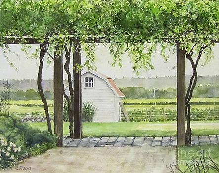 Westport Rivers Winery by Carol Flagg
