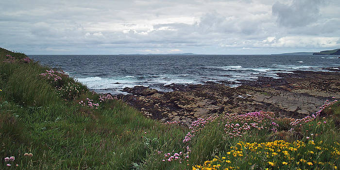 Westray Firth by Steve Watson
