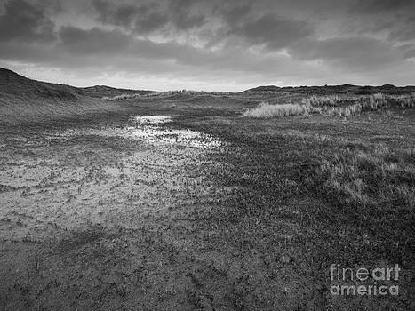 Wet Dune Valley  by David Hanlon