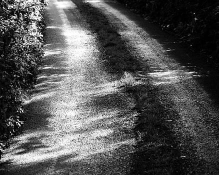 Wet Lane by Michael Tipton