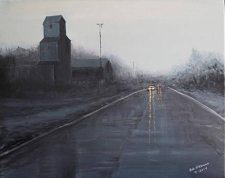 Wet Road and Barn by Bob Hasbrook