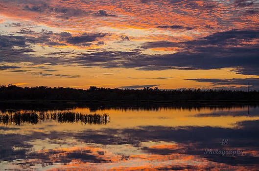 Wetland Sunset 4 by Brian Manley
