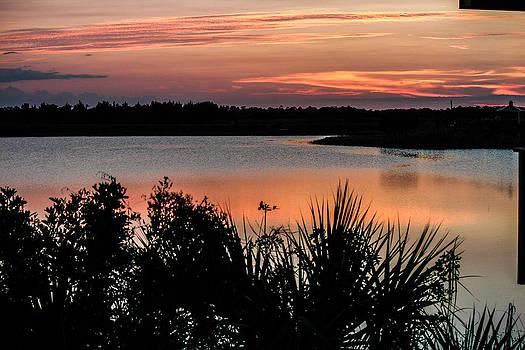 Wetlands Aglow  by Lesley Brindley