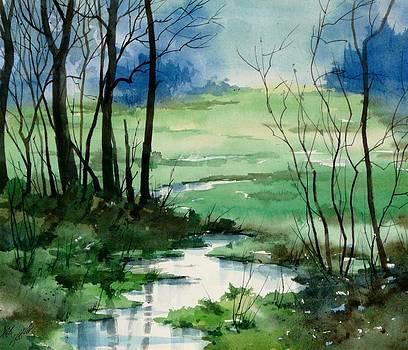 Wetlands Flow by Art Scholz