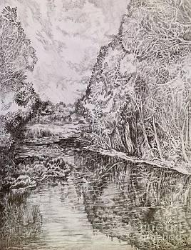 Wetlands by Iya Carson