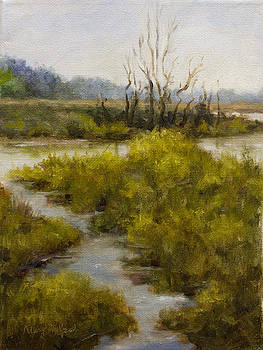 Wetlands by Mary Phelps
