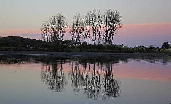 Venetia Featherstone-Witty - Whakatane River at sunset