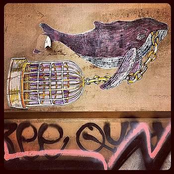 #whale #posterart #streetart by John Baccile
