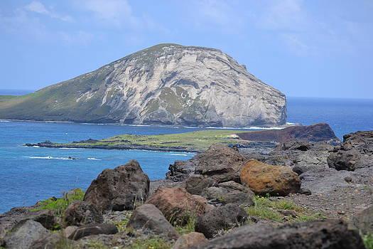 Whale Rock Formation by Amanda Eberly-Kudamik