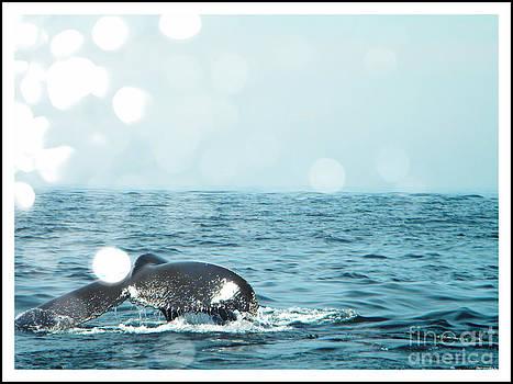 Whale Tale by Lorraine Heath
