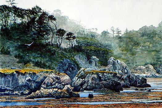 Whalers Cove II by Bill Hudson