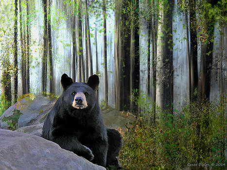Grace Dillon - What Bears Do in the Woods