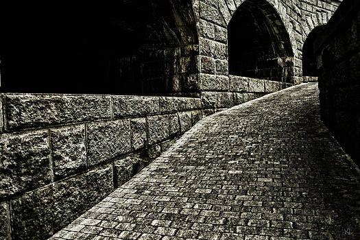 Karol Livote - What Lurks Around The Corner