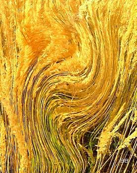Wheat by Lorna Bush