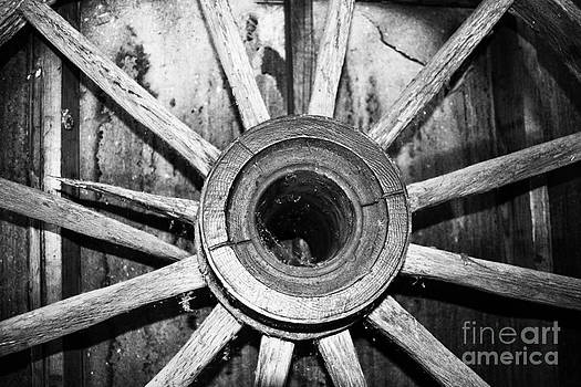 Wheel by Catherine Hill