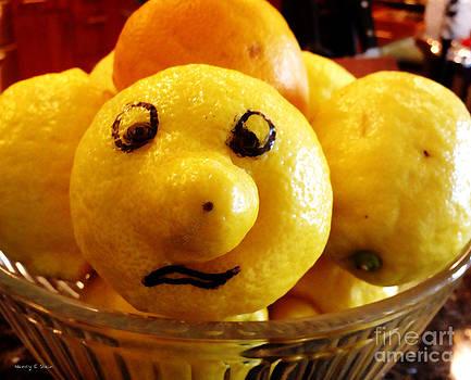 Nancy Stein - When Life Gives You Lemons
