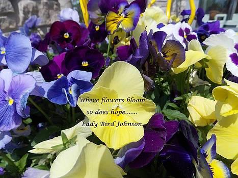 Where Flowers Bloom by Carolyn Repka