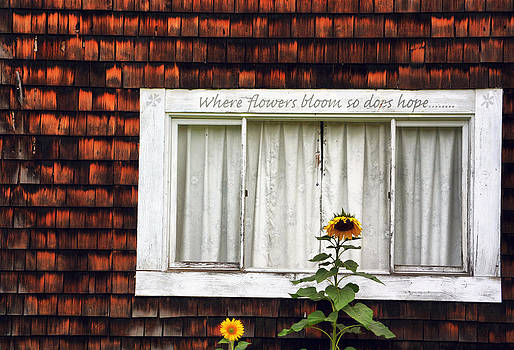 Emily Stauring - Where Flowers Bloom