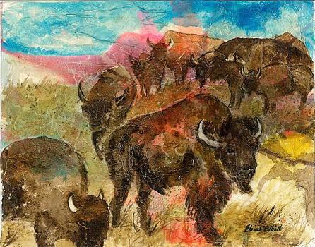 Where the Buffalo Roam by Elaine Elliott