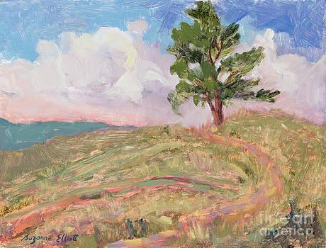Where the Buffalo Roam by Suzanne Elliott
