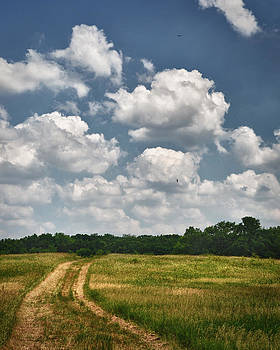 Dennis James - Dirt Road