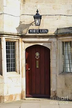 Whhite Lion by Stephanie Guinn