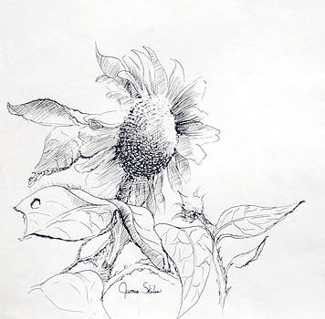 Whimsical Sunflower  by James Skiles