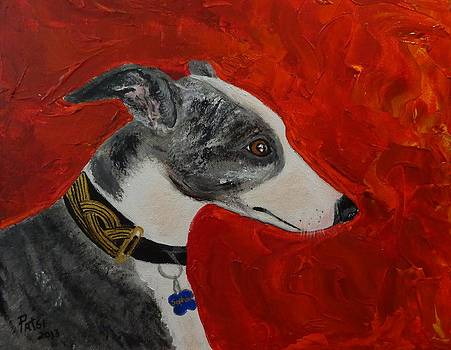 Whippet dog named Sophie by Patsi Stafford