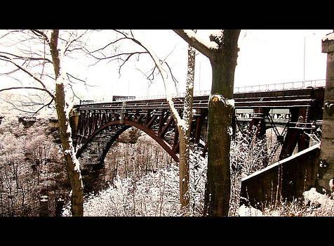 Whirlpool Bridge in Winter by Sherrie Robins
