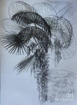 Whispering Winds by Victoria  Tekhtilova