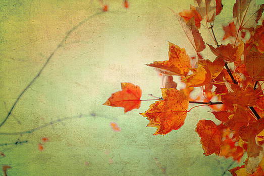 Whispers of Autumn by Sharon Kalstek-Coty