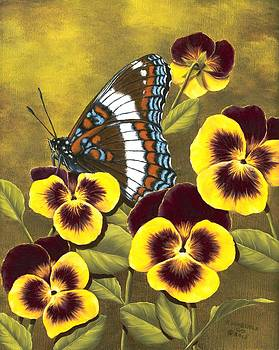 White Admiral and Pansies by Rick Bainbridge