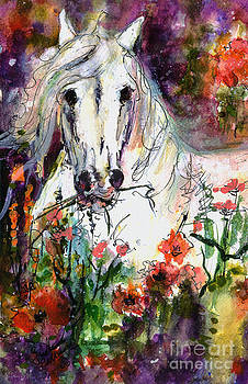 Ginette Callaway - White Andalusian Stallion in Poppy Field Painting by Ginette