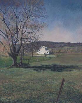 White Barn on Rte.119 in New Alexandria PA by David P Zippi