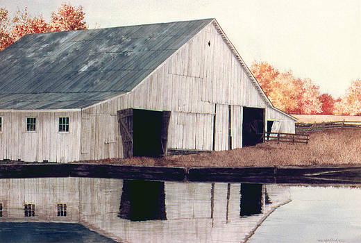 Reflections by Tom Wooldridge