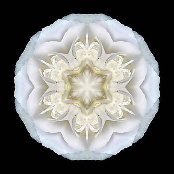 White Begonia II Flower Mandala by David J Bookbinder
