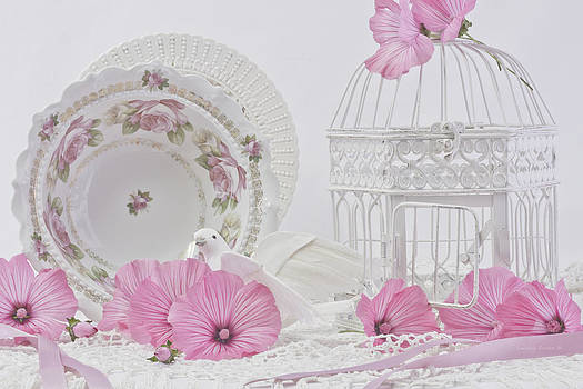 Sandra Foster - White Bird And Cage With Lavatera Flowers