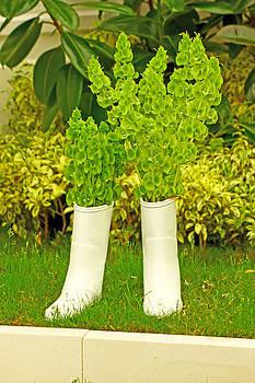 White boots by Borislav Marinic