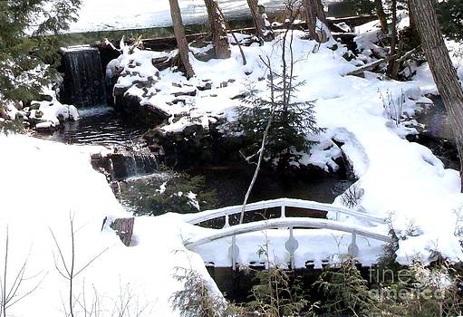 Gail Matthews - White Bridge over Peaceful falls