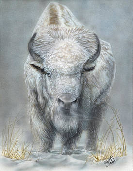 White Buffalo by Wayne Pruse