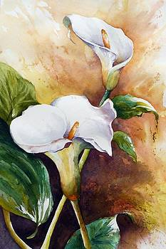 White Calla by Christa Friedl