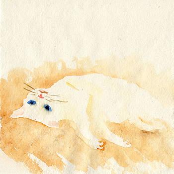 White cat lying on the floor by Yumi Kudo