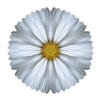 White Cosmos I Flower Mandala White by David J Bookbinder